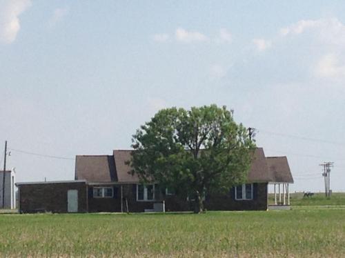 4162 Highway 86 W Photo 1