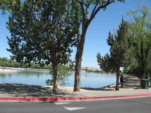 2955 Lakeside Drive Photo 1