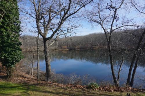 67 Willow Lake Lane #A3 Photo 1
