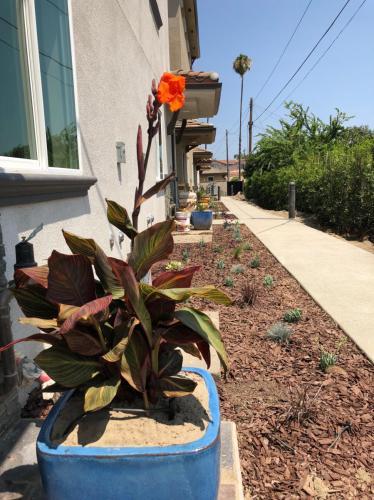 Louise Avenue Photo 1