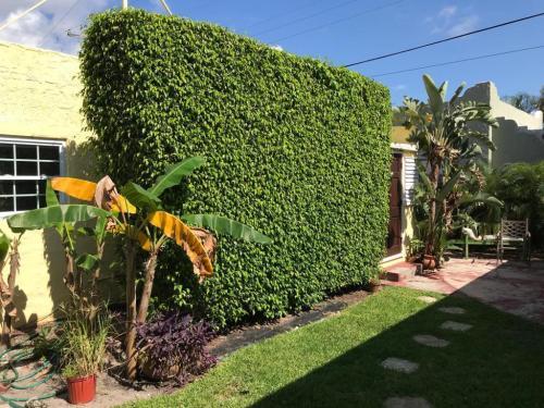 4809 Garden Avenue Photo 1