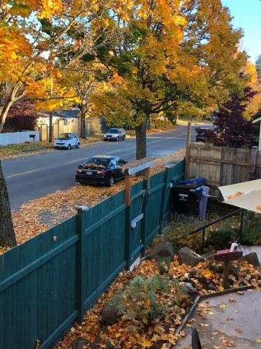 9022 9th Avenue SW Photo 1