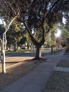 N Mt View Avenue Photo 1