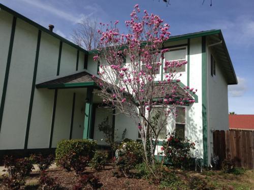 1051 Renown Drive Photo 1