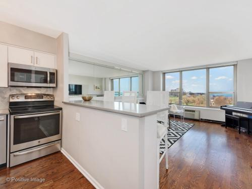 1550 N Lake Shore Drive Photo 1