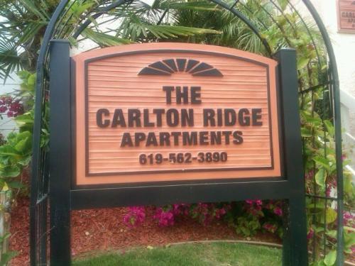 9653 Carlton Hills Boulevard #4 Photo 1