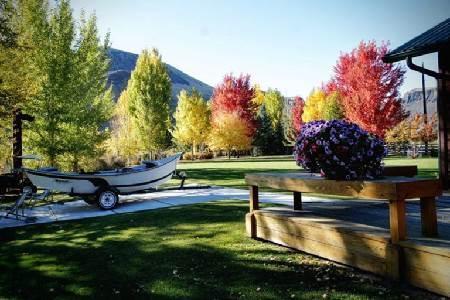 131 Redwood Photo 1