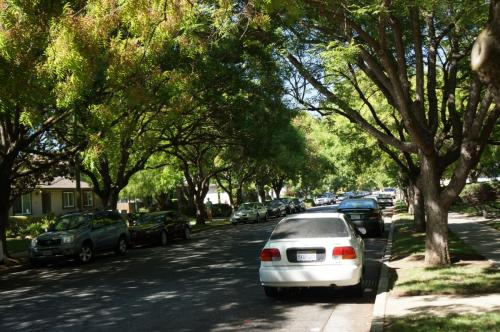 El Zuparko Drive Photo 1
