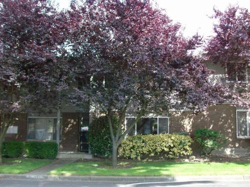 5928 123rd Avenue SE Photo 1