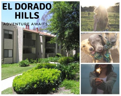 3835 Colina Dorada Drive #E202 Photo 1