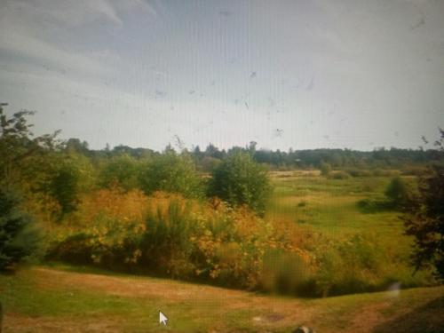5817 Circle Bluff Drive Photo 1