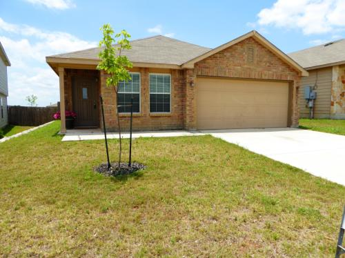 3918 Texas Hawthorn Photo 1