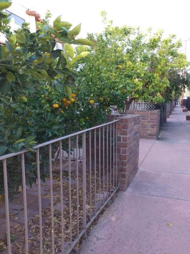 402 S Garfield Avenue #24 Photo 1