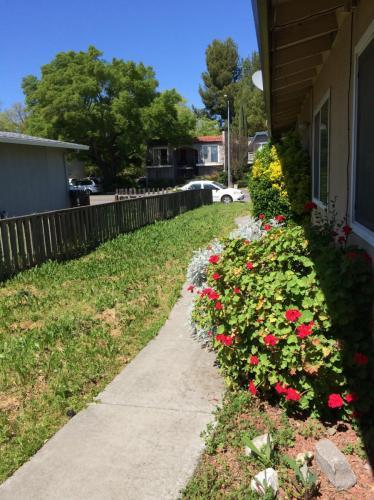 4914 Cowell Boulevard Photo 1