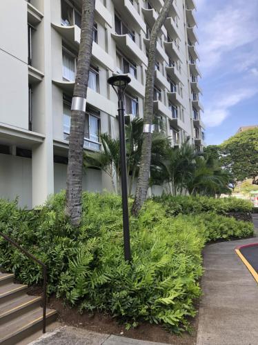 1511 Nuuanu Avenue Photo 1