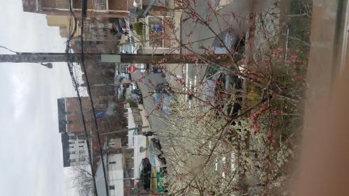 13534 82nd Avenue #1 Photo 1