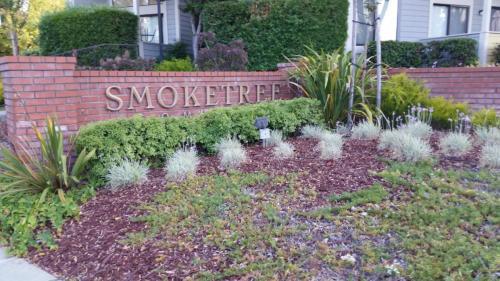 3306 Smoketree Commons Drive Photo 1