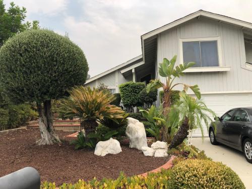 Wyn Terrace Photo 1