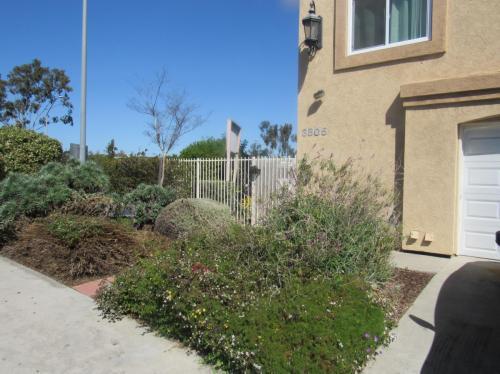 3805 Boundary Street Photo 1
