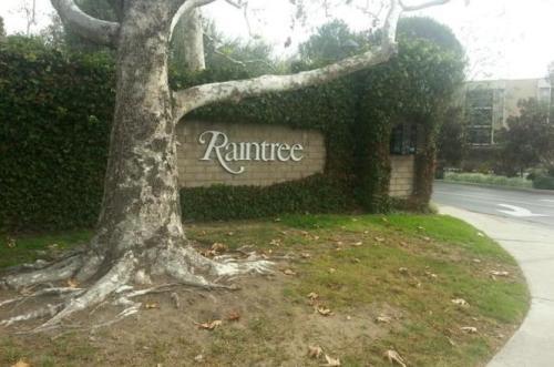8213 Raintree Circle Photo 1