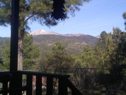 141 Blue Spruce Photo 1