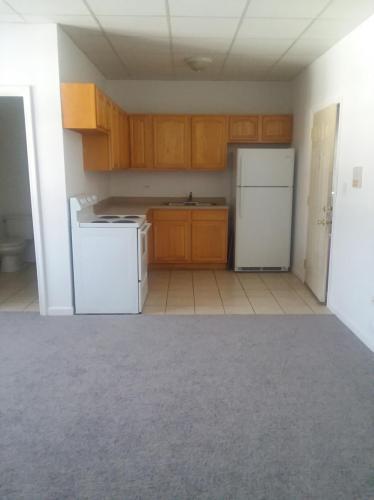 7329 S Cottage Grove Avenue #304 Photo 1