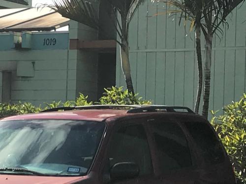 1019 Aheahe Avenue #113 Photo 1