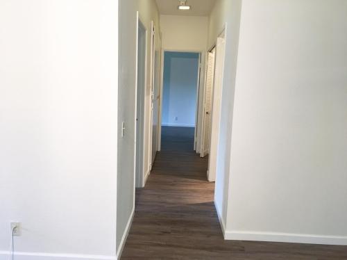 3514 Birchwood Terrace Photo 1