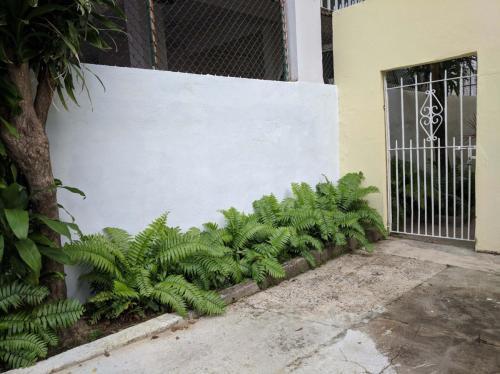 503 Avenue Sagrado Corazon #A Photo 1
