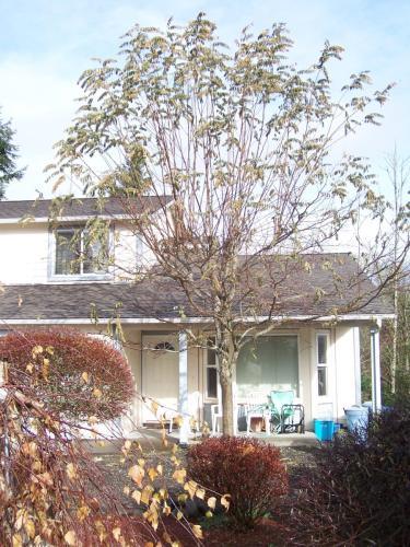 Winterwood Drive Photo 1