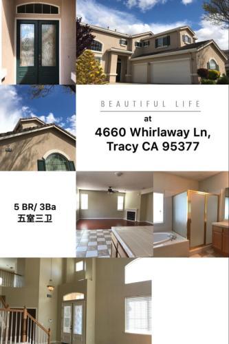 4660 Whirlaway Lane Photo 1
