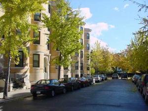6 Blackwood Street Photo 1