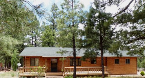 2206 Forest Park Drive Photo 1