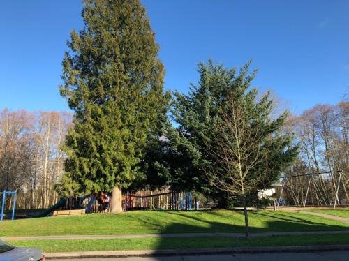 9523 Ashworth Avenue N Photo 1