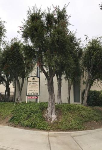712 S Fernwood Street Photo 1