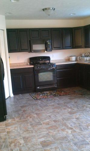 1210 Gneiss Drive Photo 1