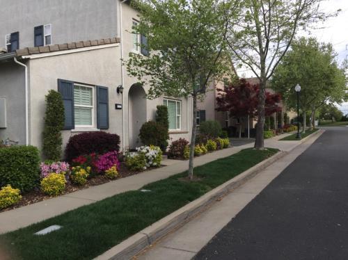 Villa Gardens Court Photo 1