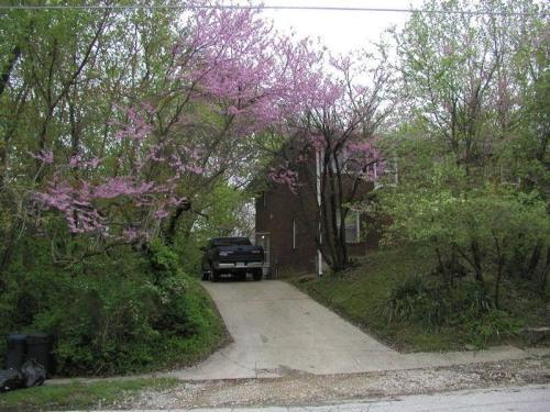 136 B Spring Street #B Photo 1