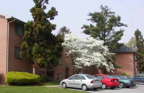 740 Cumberland Ave A1 Photo 1