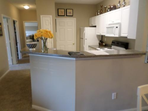 209 Camellia Trace, Maryville, TN 37801 | HotPads