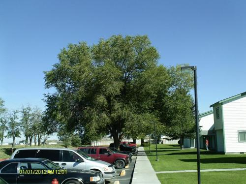 133 Hillcrest Avenue Photo 1