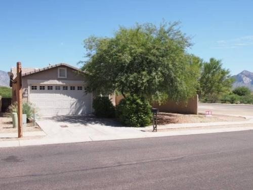 12822 N Yellow Orchid Drive Photo 1