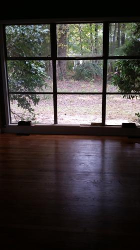 319 Oak Run Drive Photo 1