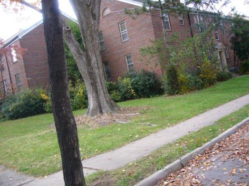 808 Monument Avenue Photo 1