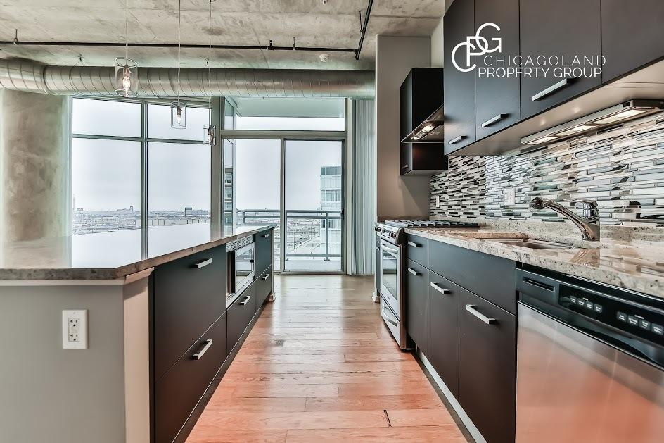 South Loop 2 bed/2 Bath Loft with in unit w/d Photo 1