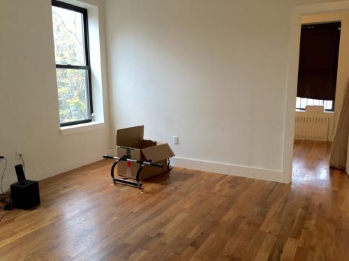 2 bedroom apartment in Flatbush 4C Photo 1