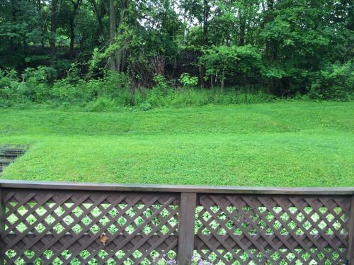2 bed, $700 120 Photo 1