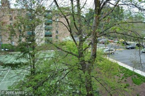 6137 Leesburg Pike 403 Photo 1
