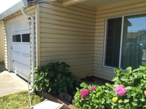 Spacious 4 bedrooms, 2 baths, with extra large Den Photo 1