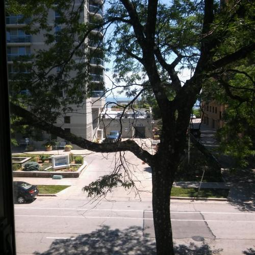 1653 N Prospect Avenue #318 Photo 1